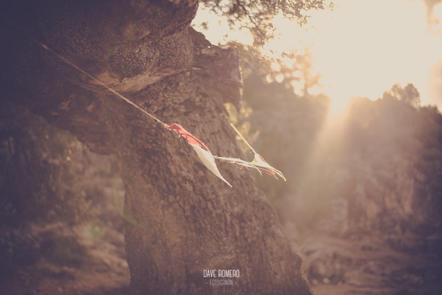 Preboda-Logroño-Dave-Romero-2